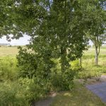 Hulshorst – Varelseweg 211-0011 – Foto 43